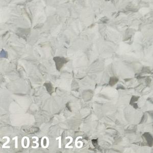 大巨龙维也纳21030126