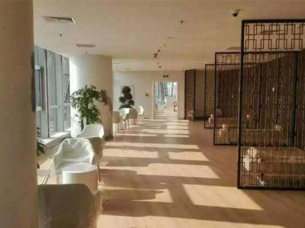 大巨龙木纹pvc地板石家庄妇产医院
