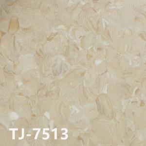 纳米亚TJ-7513