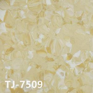 纳米亚TJ-7509