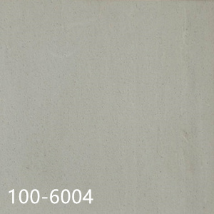 100-6004