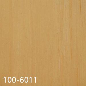 100-6011