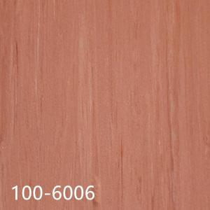 100-6006