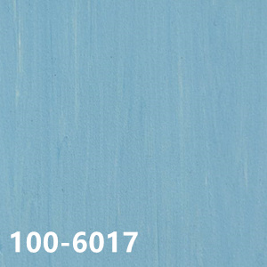 100-6017