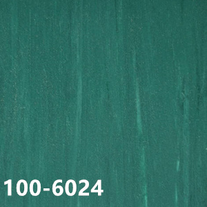100-6024