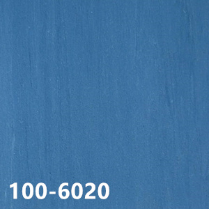 100-6020