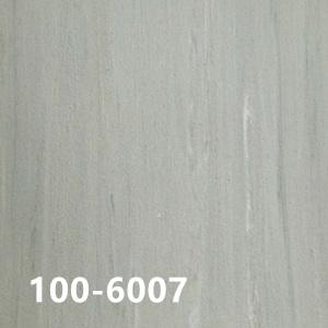 100-6007