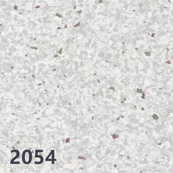 野心2054