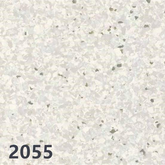 野心2055