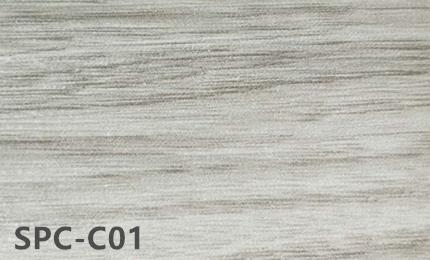 SPC-C01
