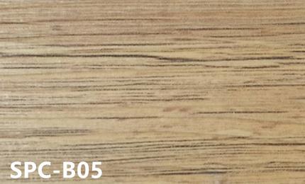 SPC-B05