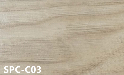 SPC-C03