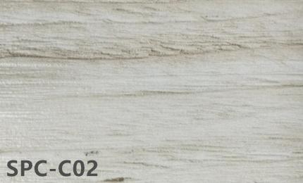 SPC-C02