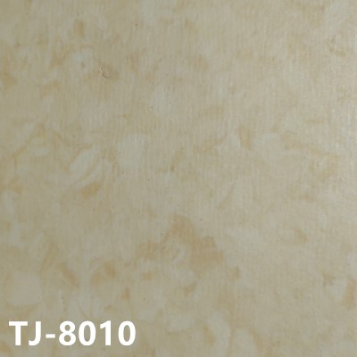 嘉洁TJ-8010