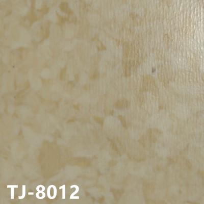 嘉洁TJ-8012
