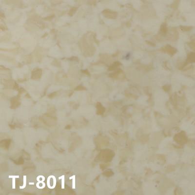 嘉洁TJ-8011