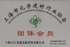 大巨龙获得化学建材行业协会团体会员