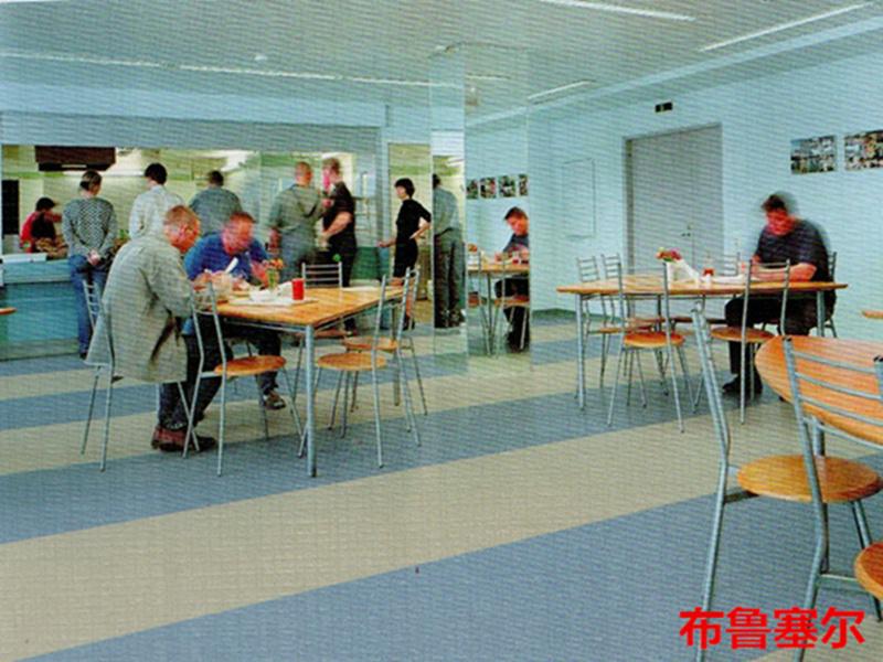 布鲁塞尔系列-大巨龙T级耐磨同质透心地板